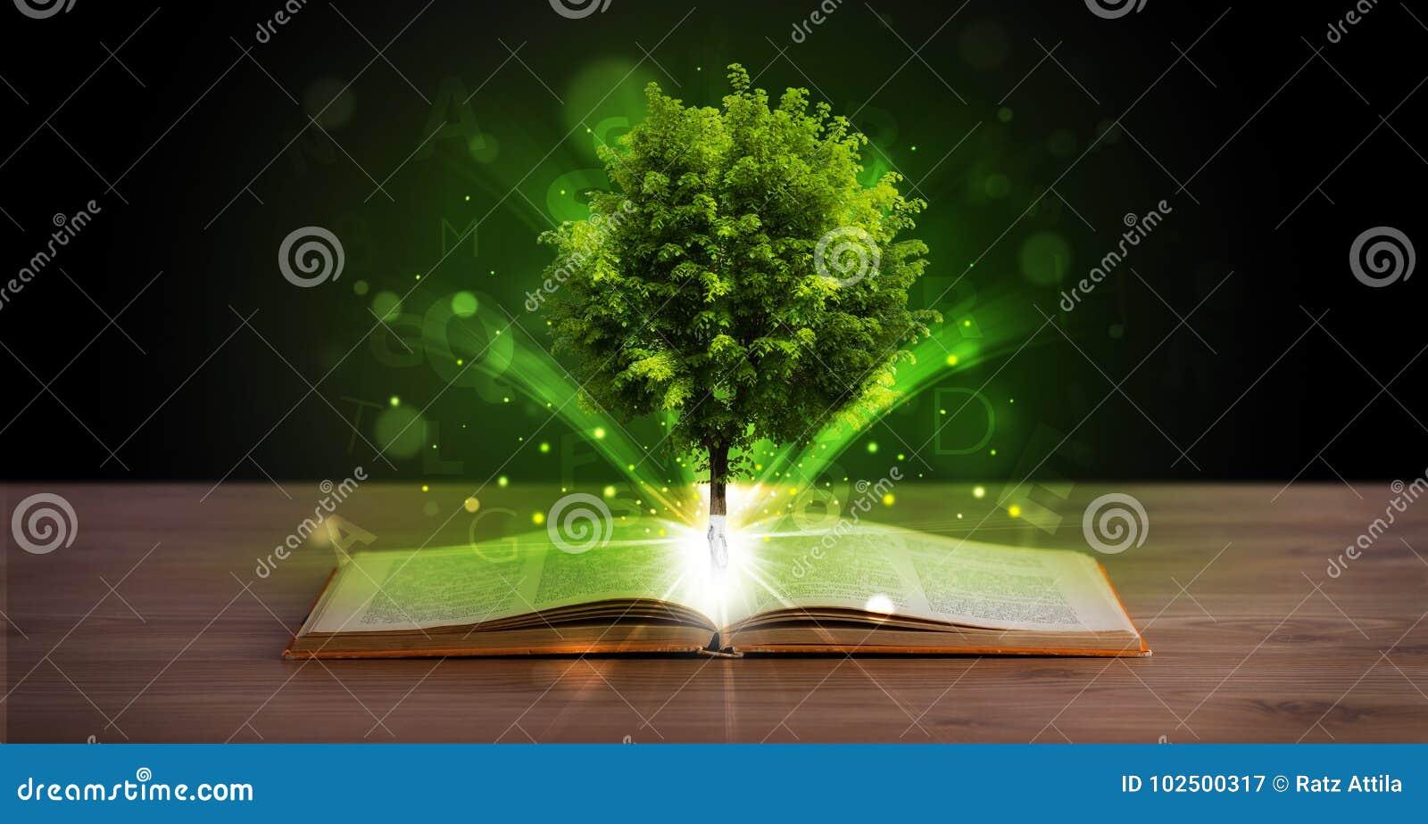 Otwiera książkę z magicznym zielonym drzewem i promieniami światło