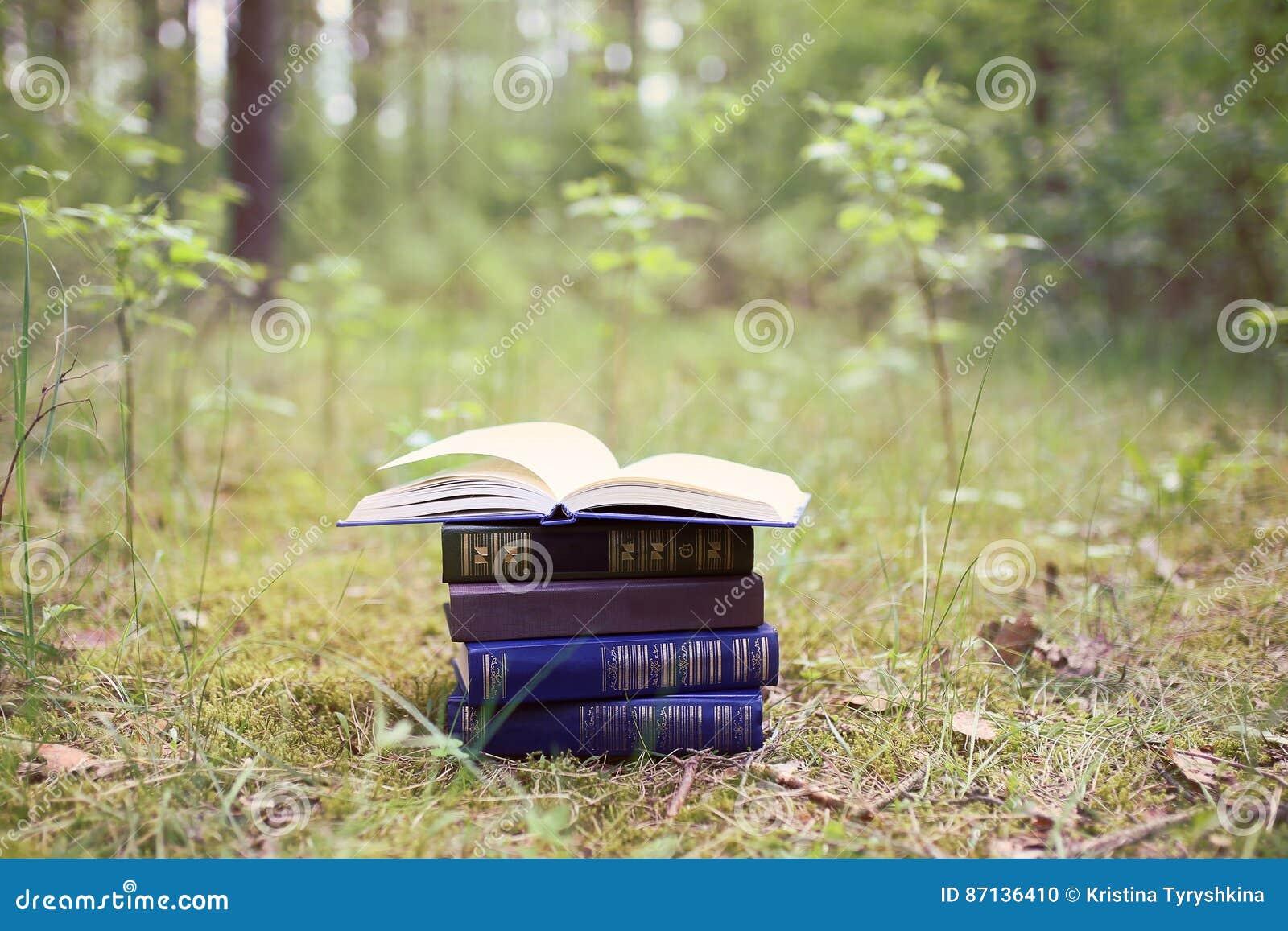 Otwiera książki plenerowe Książki w drewnach