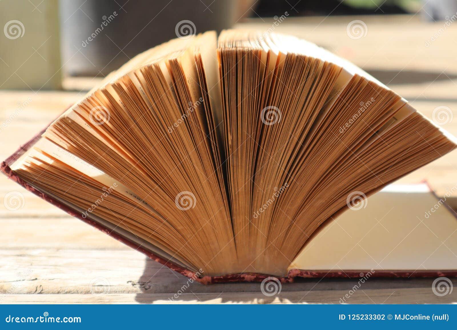 Otwiera Starą książkę w świetle słonecznym