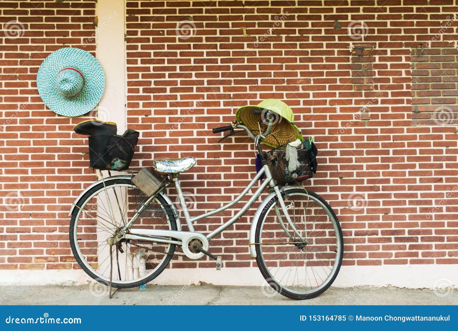 Oud fietsparkeren in het park