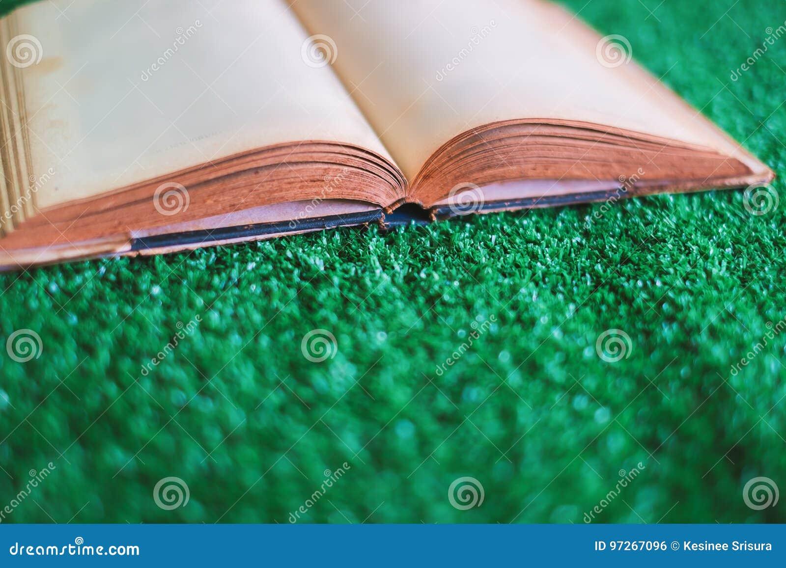 Oud geopend boek op het kunstmatige gras