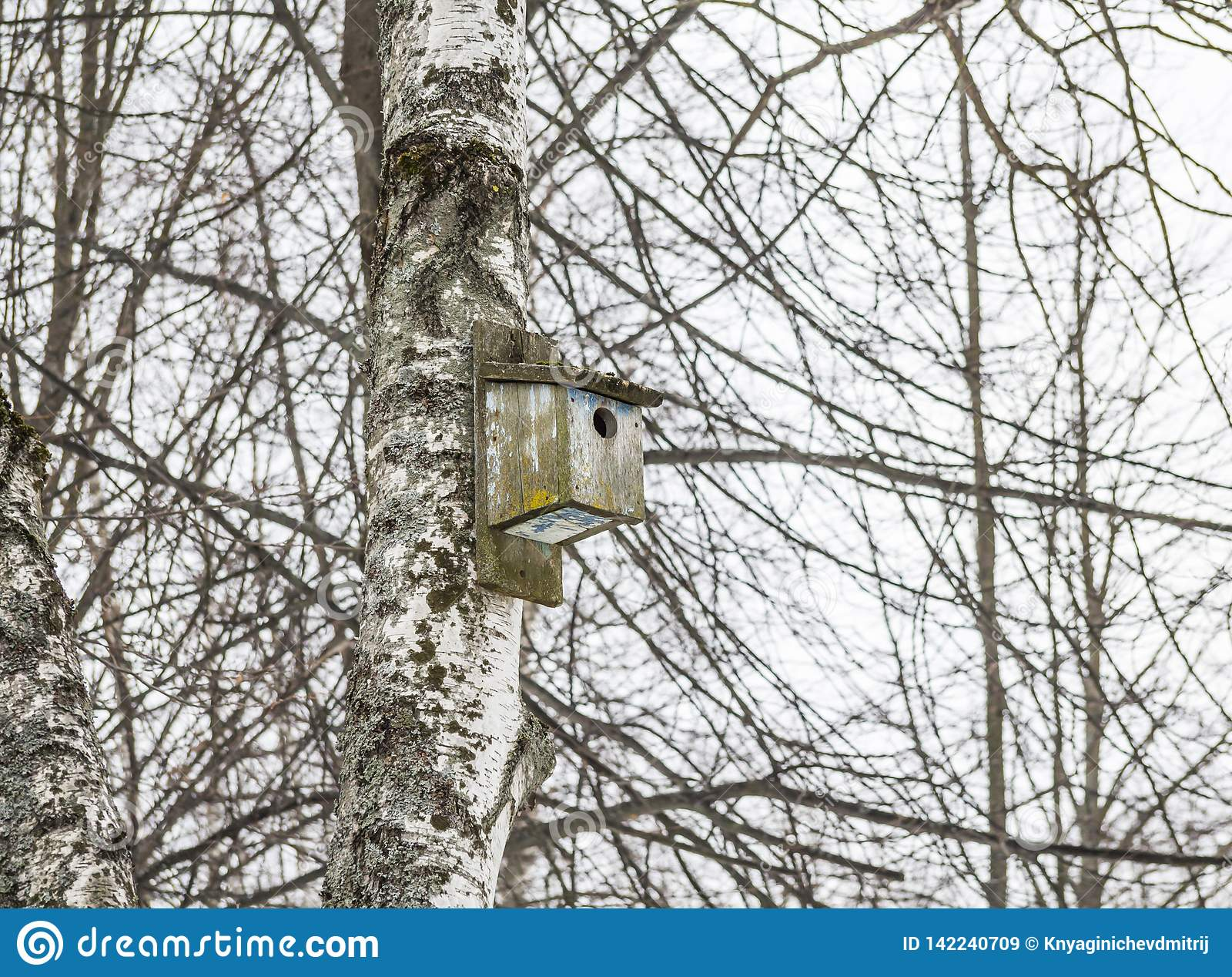 Oud houten vogelhuis op een boom Op de achtergrond van takken