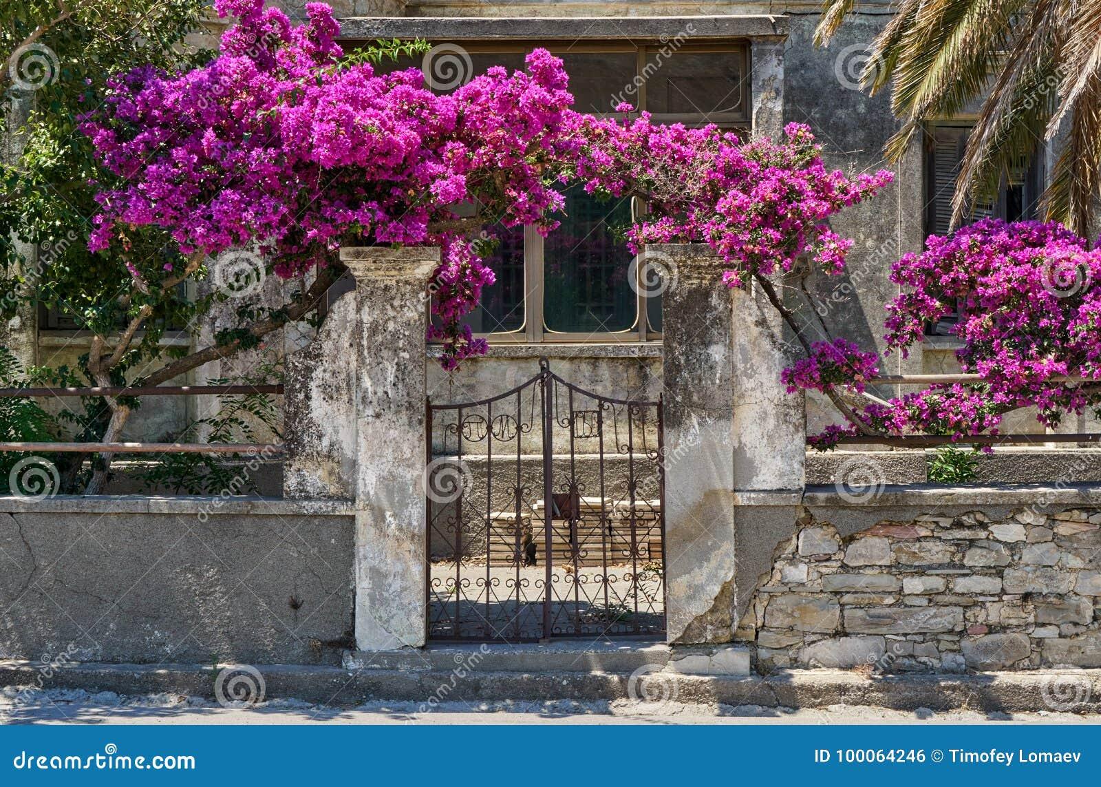 Oud huis met bloemen