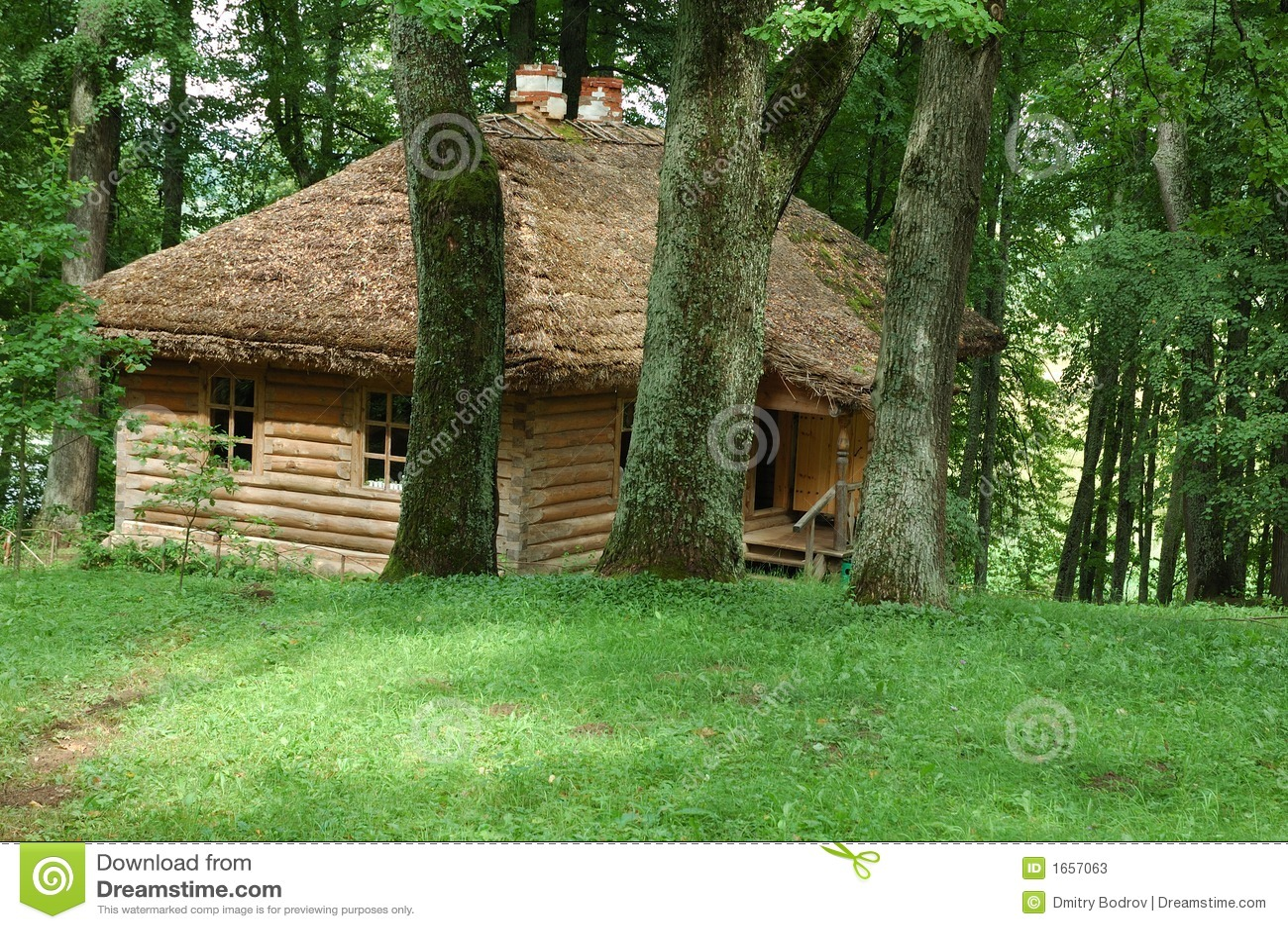 Oud huis met strodak in het dichte bos stock foto 39 s afbeelding 1657063 - Oud huis ...