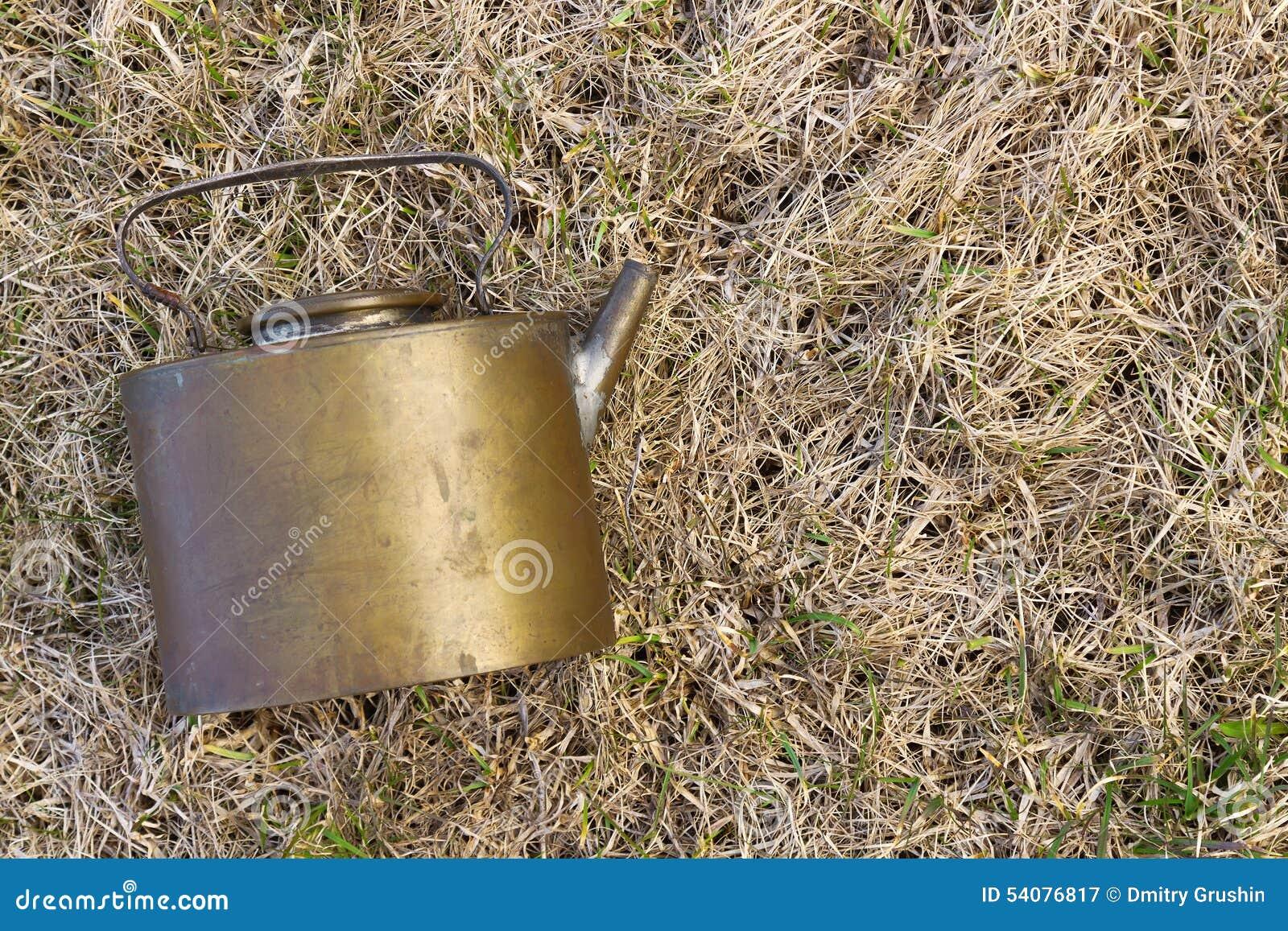 Oud Ketel het liggen gras