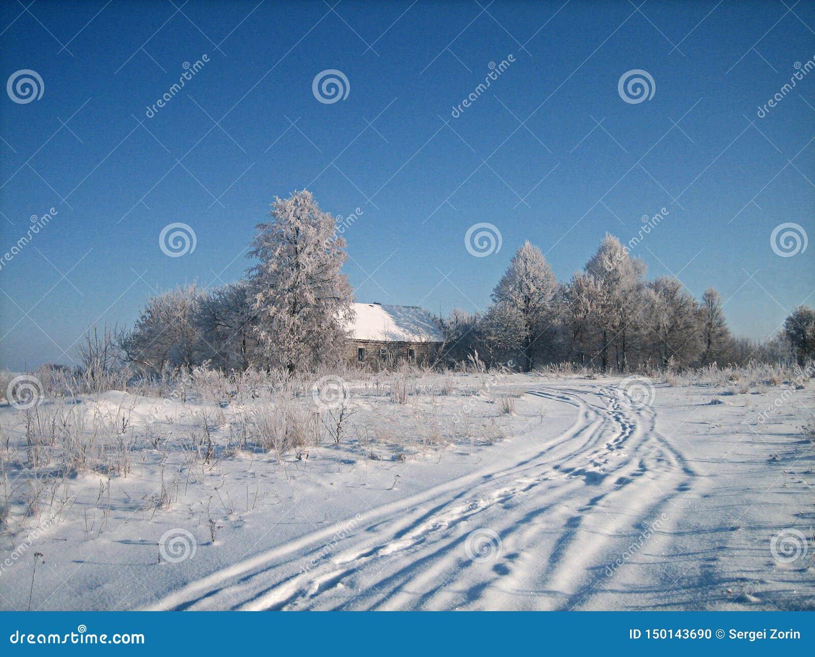 Oud verlaten blokhuis in een struikgewas van bomen op een sneeuwgebied in koude de winterdag