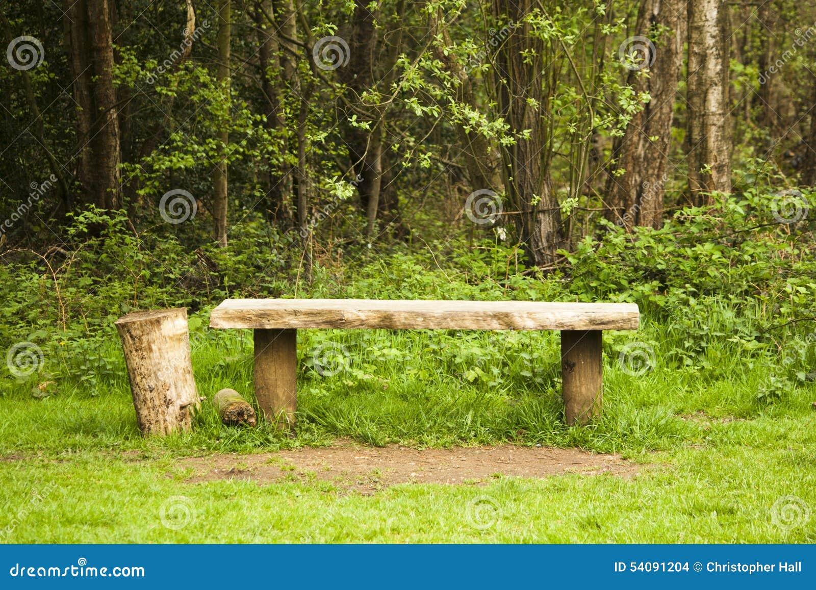 Oude die bank in het hout wordt gevonden