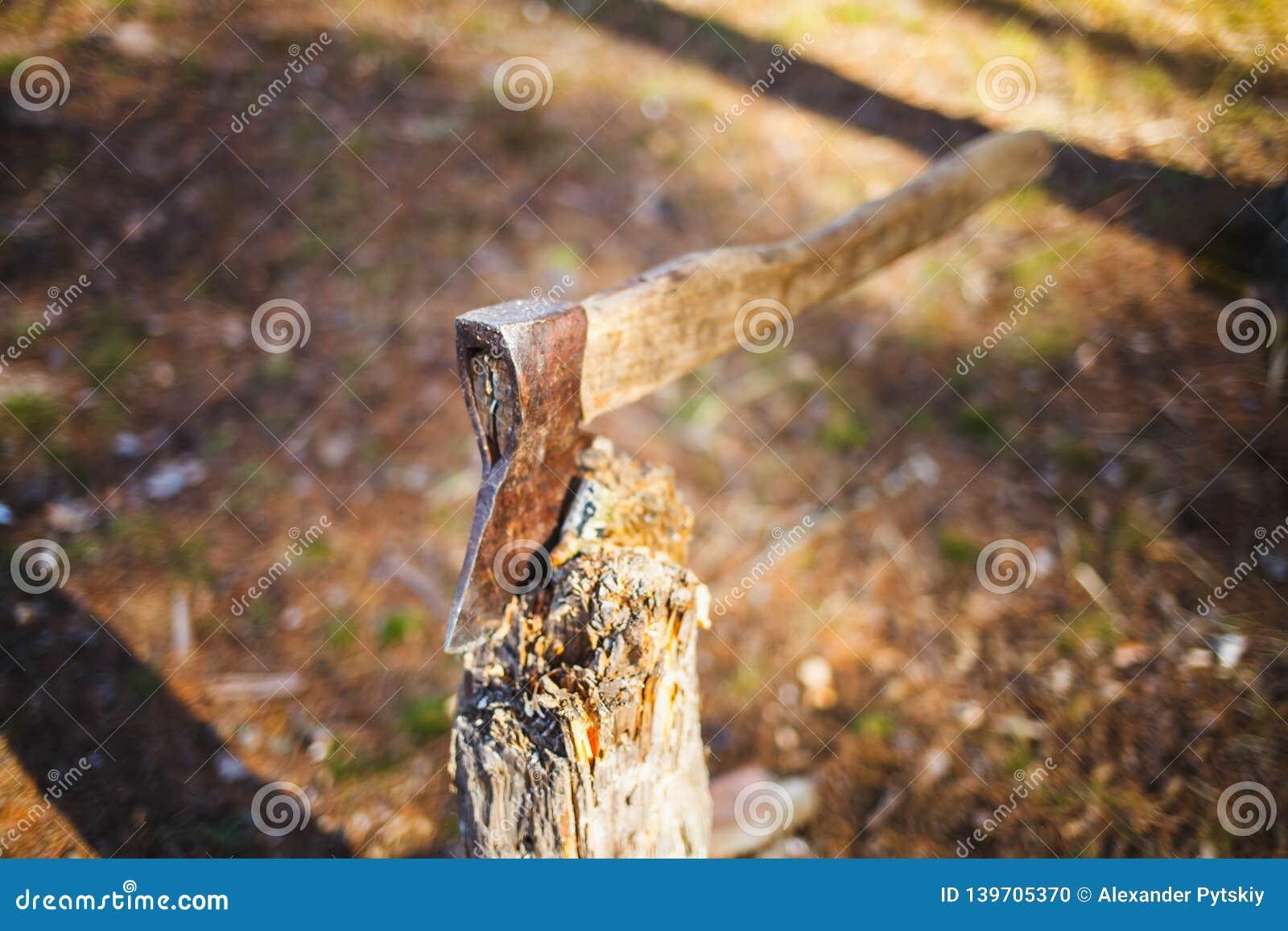 Oude die bijl in een boomstomp wordt geplakt