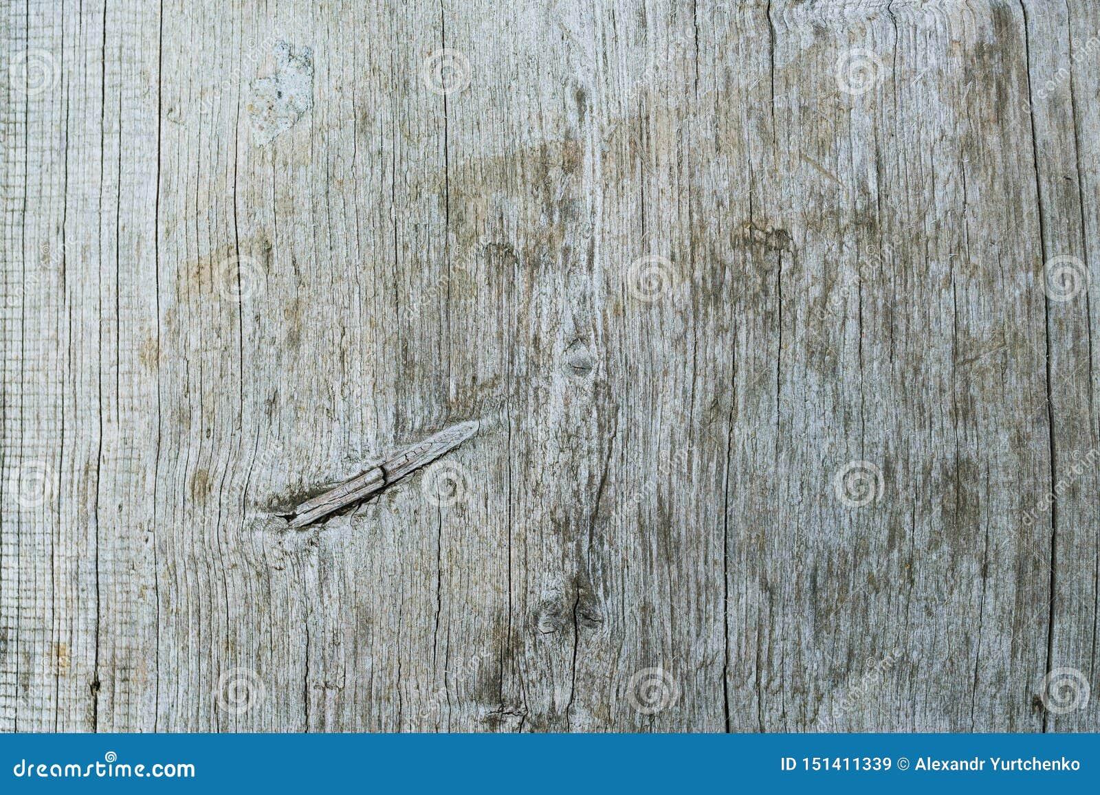 Oude grijze houtsnedetextuur