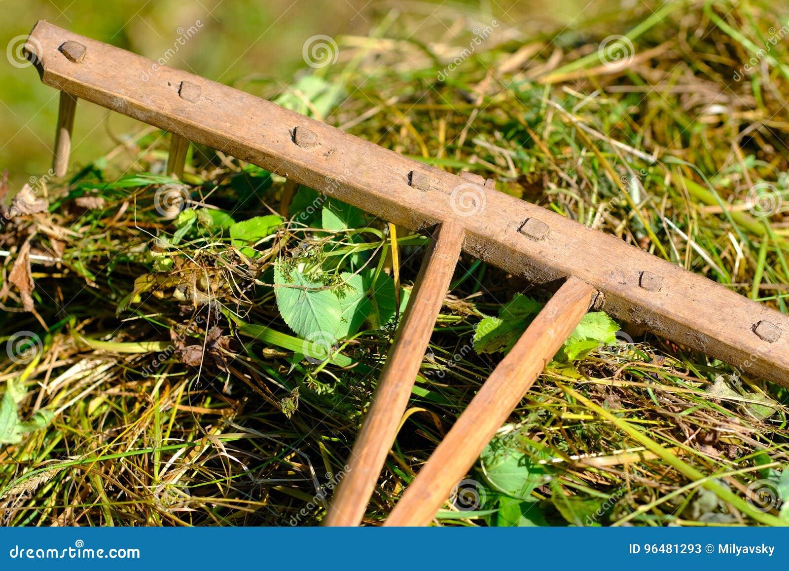 Oude houten hark op hooi