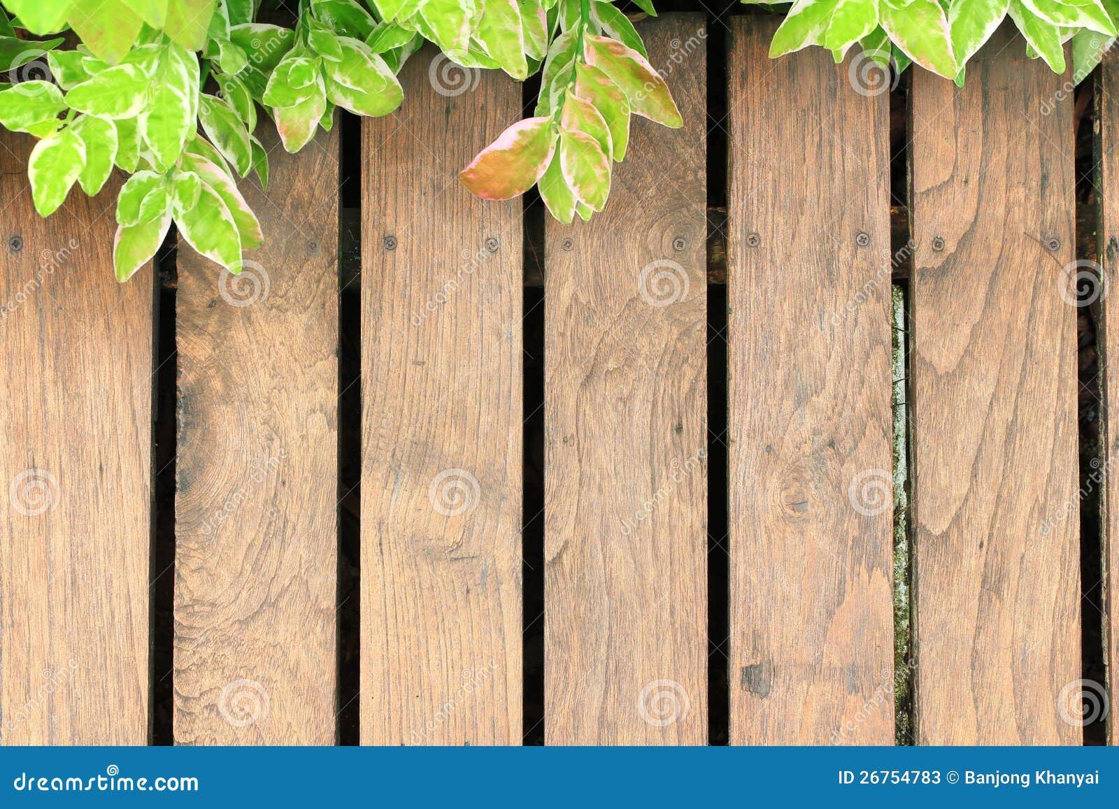 Oude houten met groen doorbladert