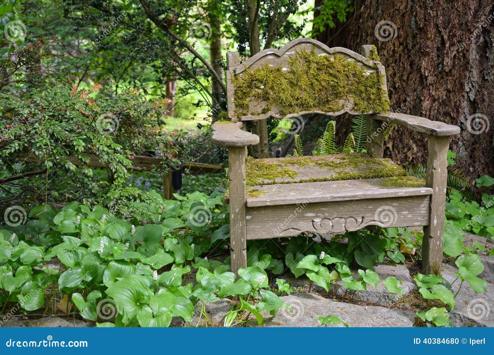 Oude houten stoel in tuin stock foto afbeelding bestaande for Stoel tuin