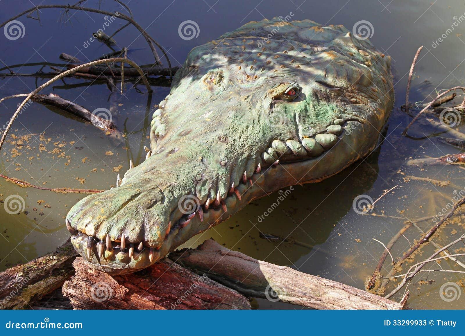 Oude krokodil