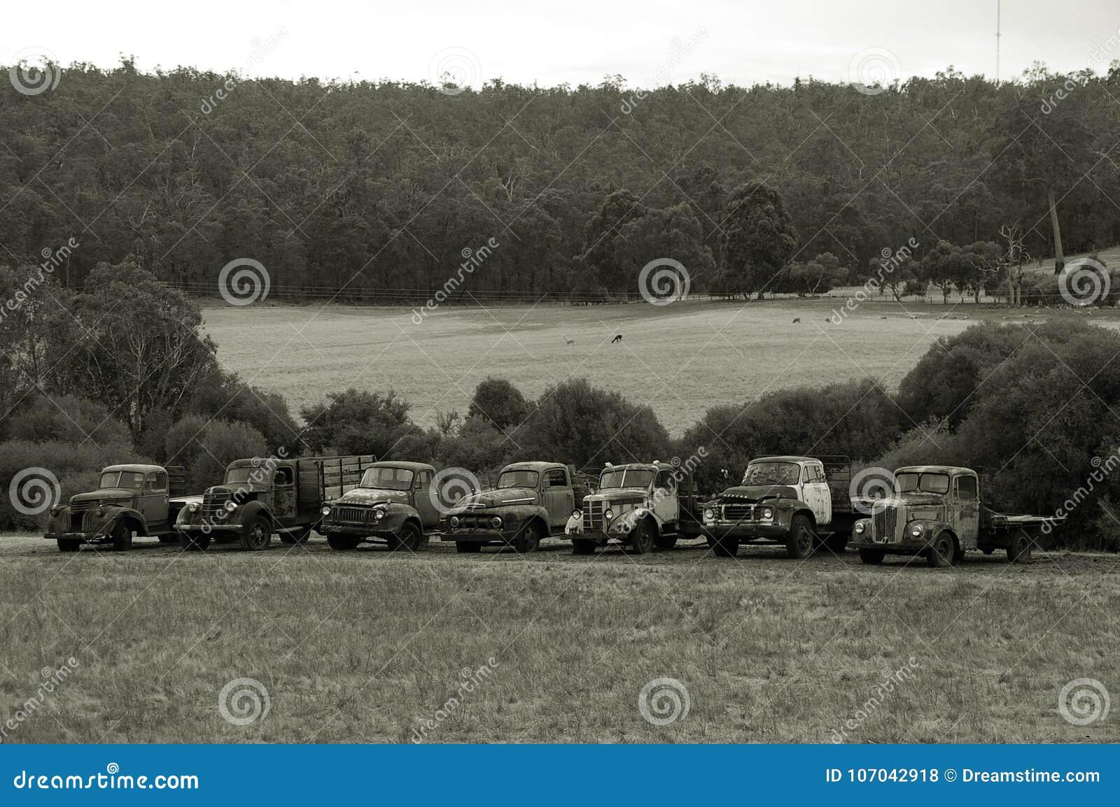 Oude Landbouwbedrijfvrachtwagens, Vrachtwagens, Tray Back