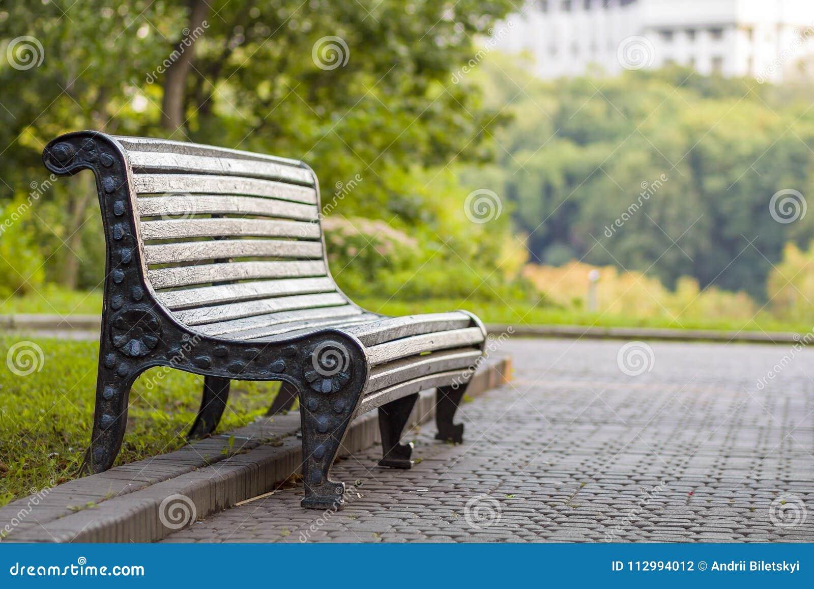 Oude lege houten bank in een schaduw van grote groene boom op heldere de zomerdag Vrede, rust, stil en ontspanningsconcept