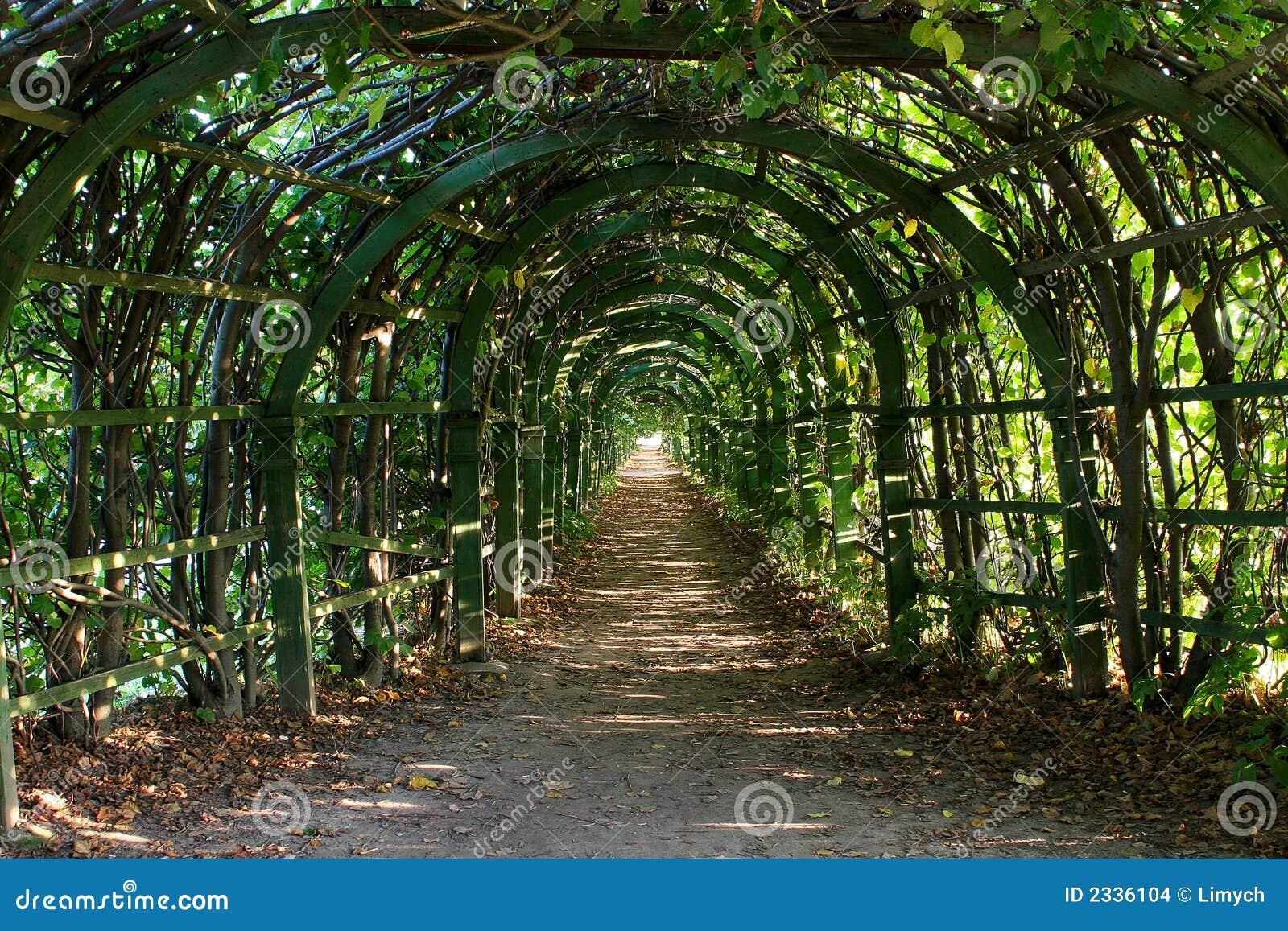Oude pergola op zonnige dag stock afbeeldingen afbeelding 2336104 - Pergola verkoop ...