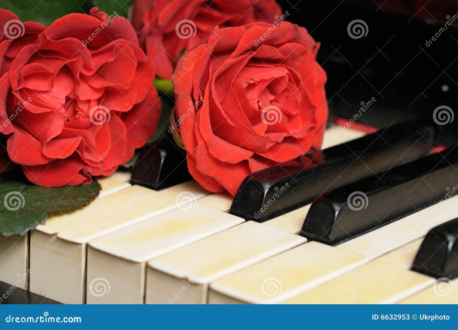 Oude Piano met Rode Rozen