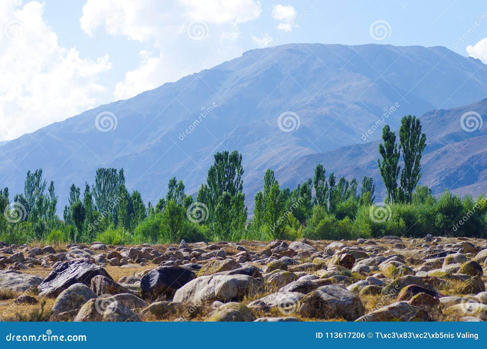 Oude plaats met rotstekeningen in Kyrgyzstan tijdens de zomer