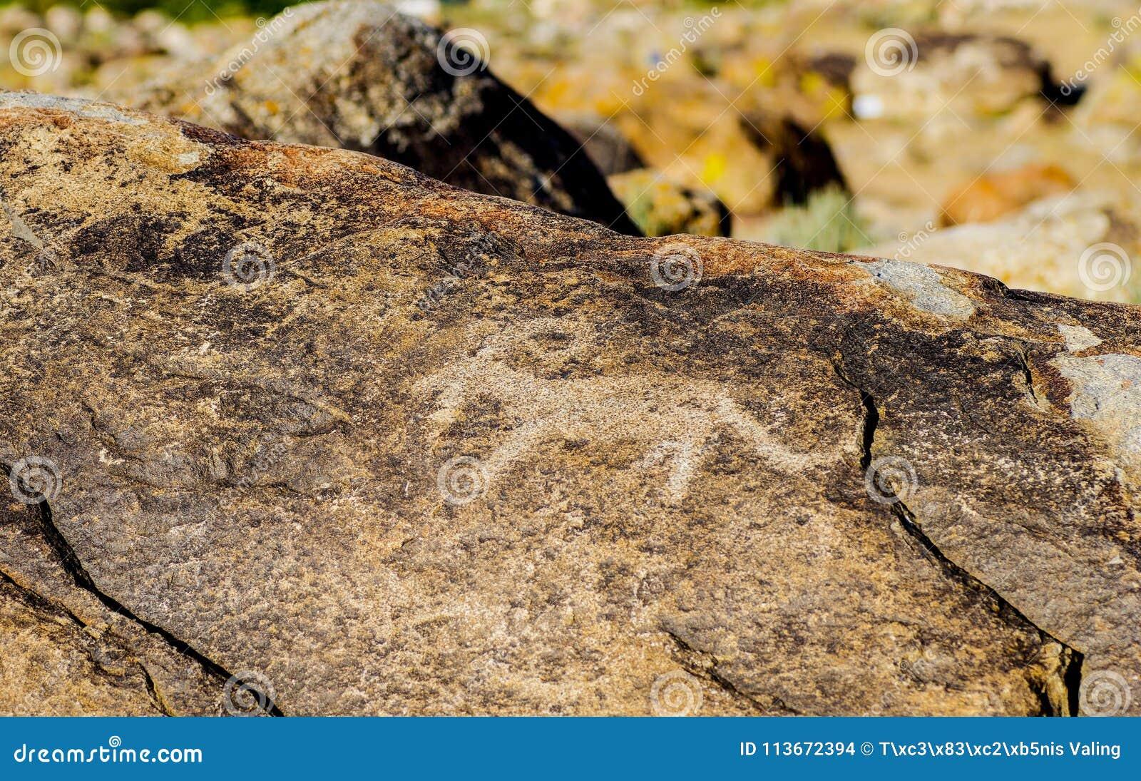 Oude rots snijdende plaats met rotstekeningen in Kyrgyzstan