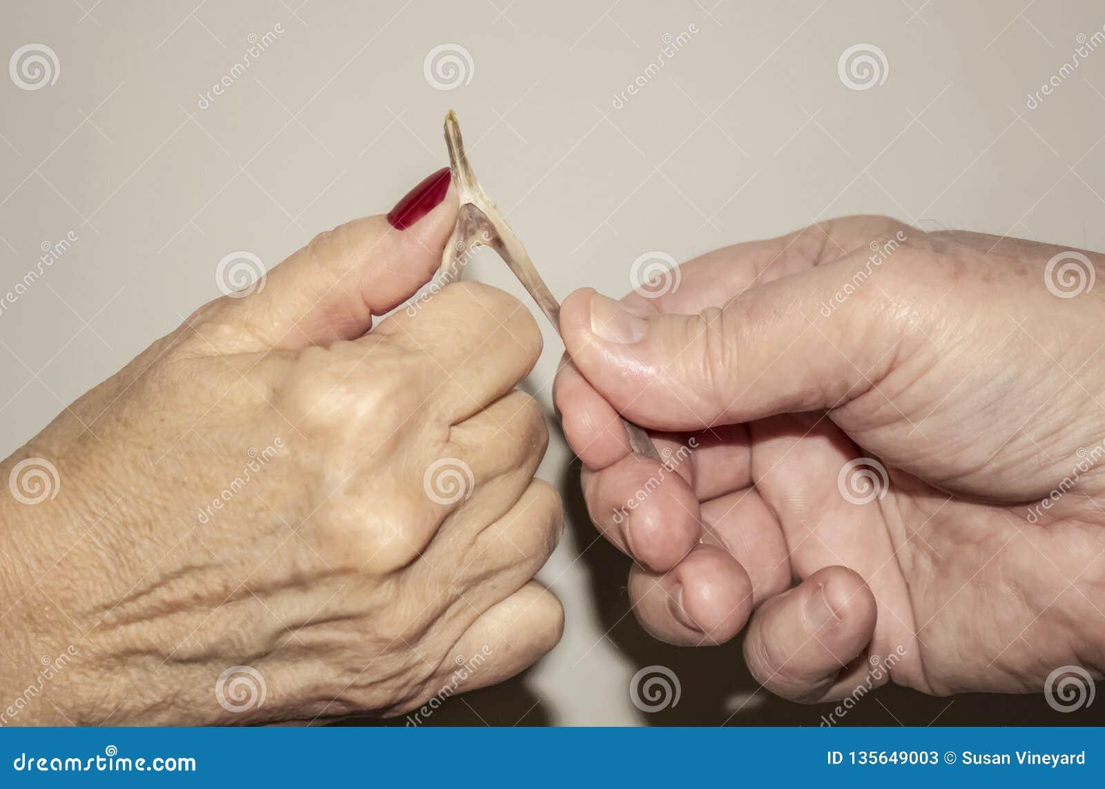 Oudere parenhanden die een vorkbeen van Turkije trekken om te zien wie hun wens tegen een lichte achtergrond krijgt