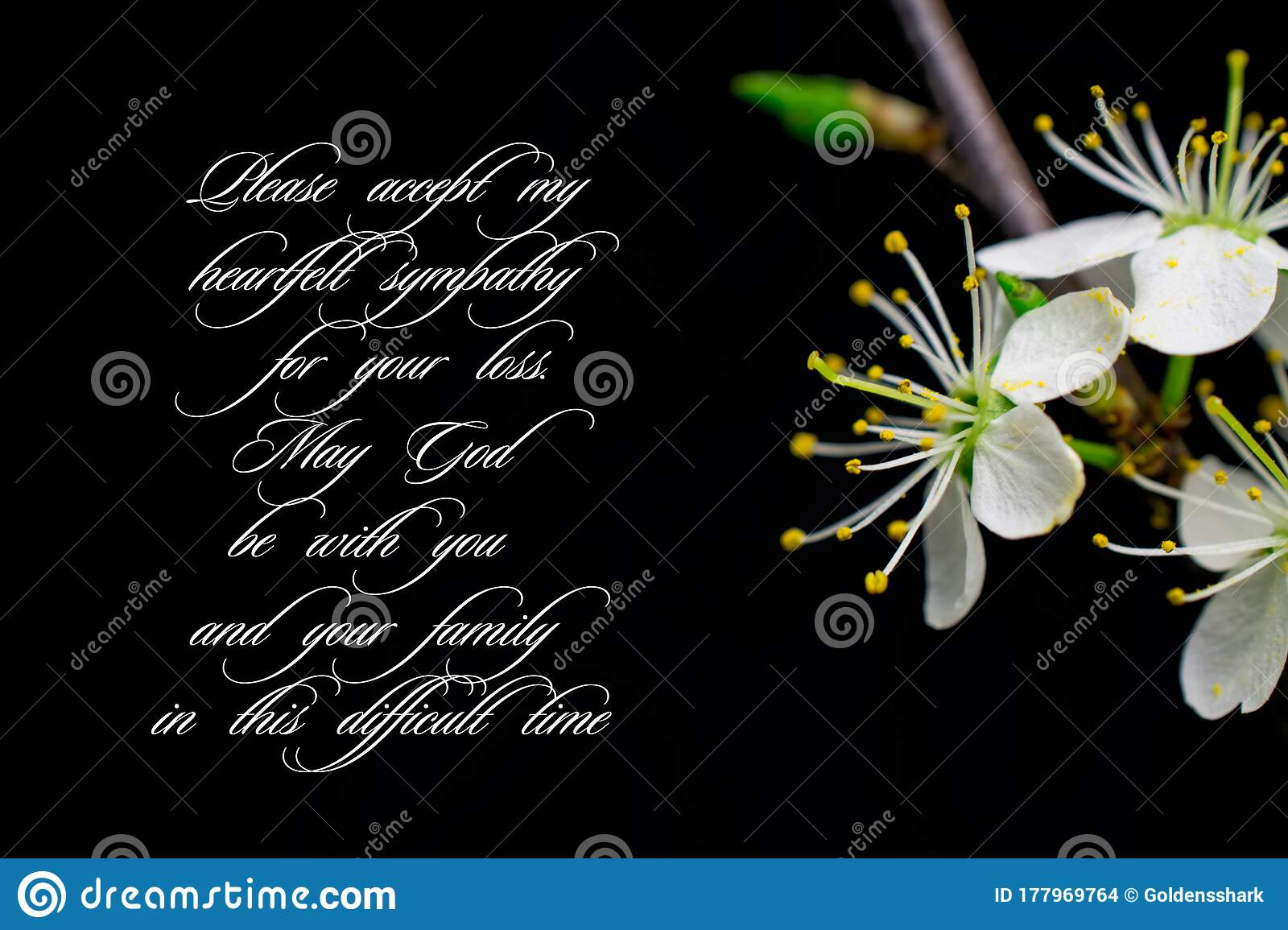 Our Deepest Condolences White Flowers On Black Background With Text Stock Photo Image Of Loss Pink 177969764