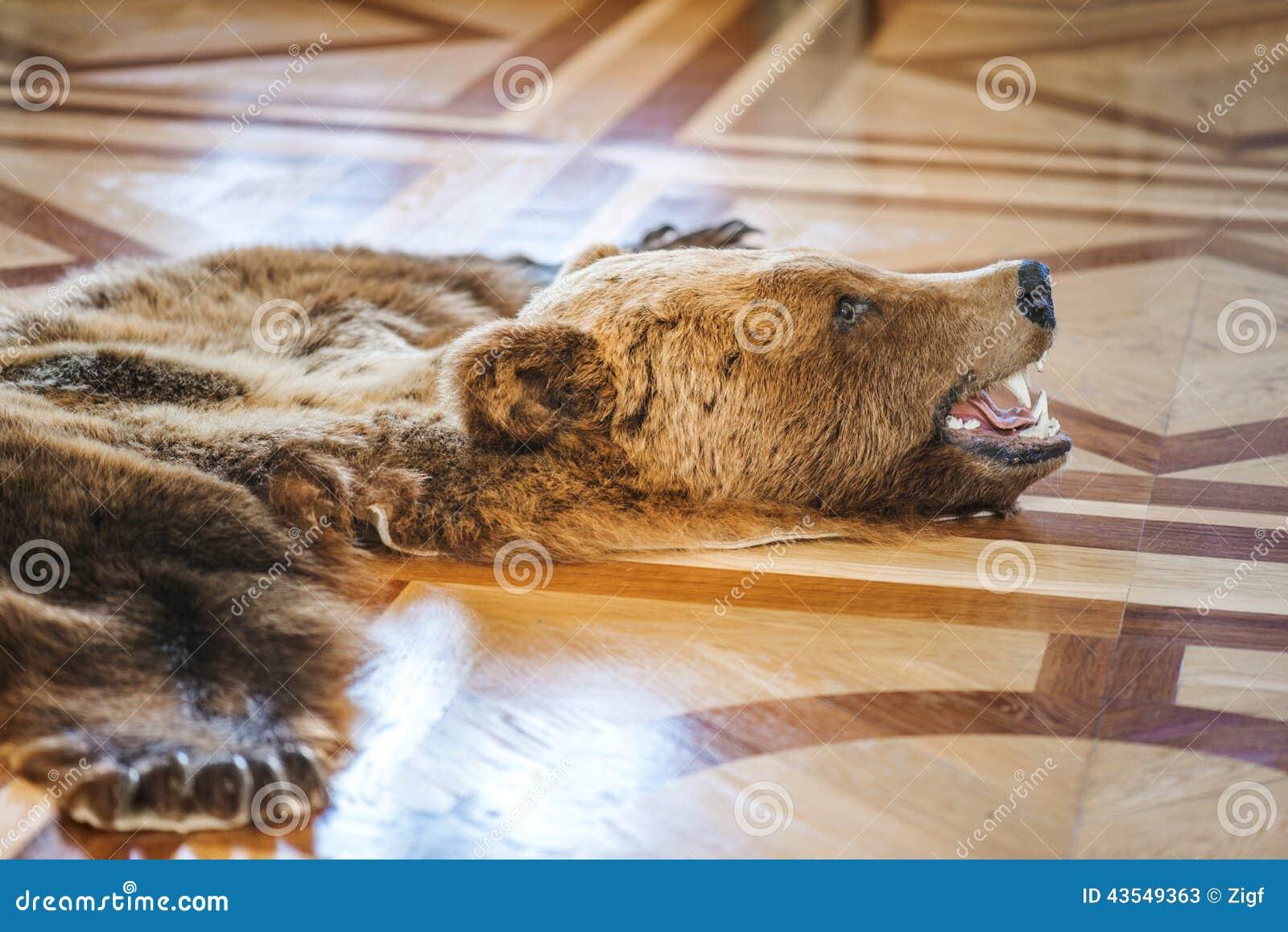 Ours tué par peau