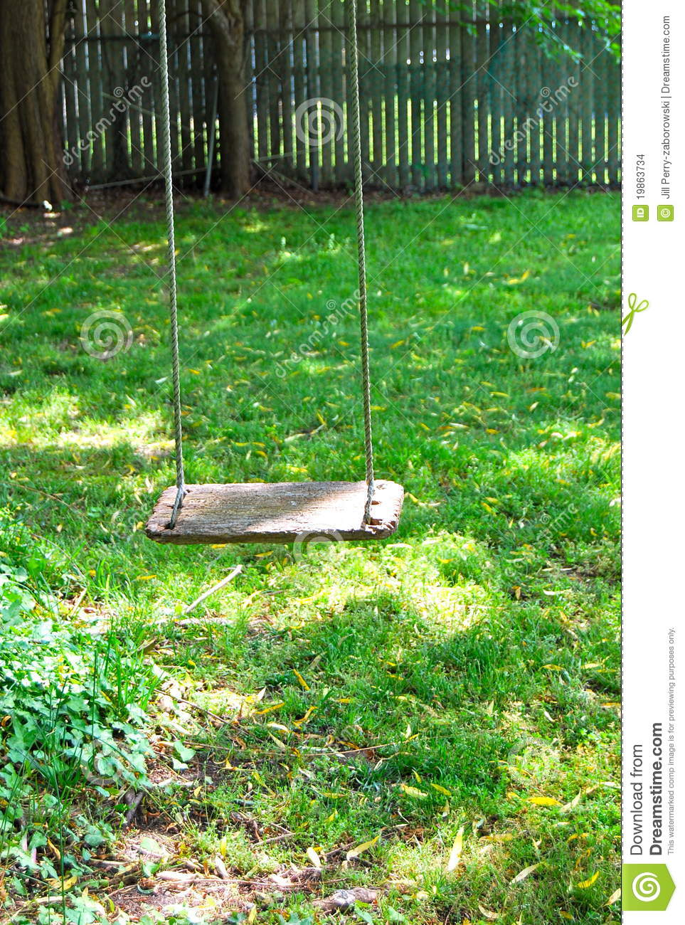 wood swing hanging from a tree in the backyard with green grass and