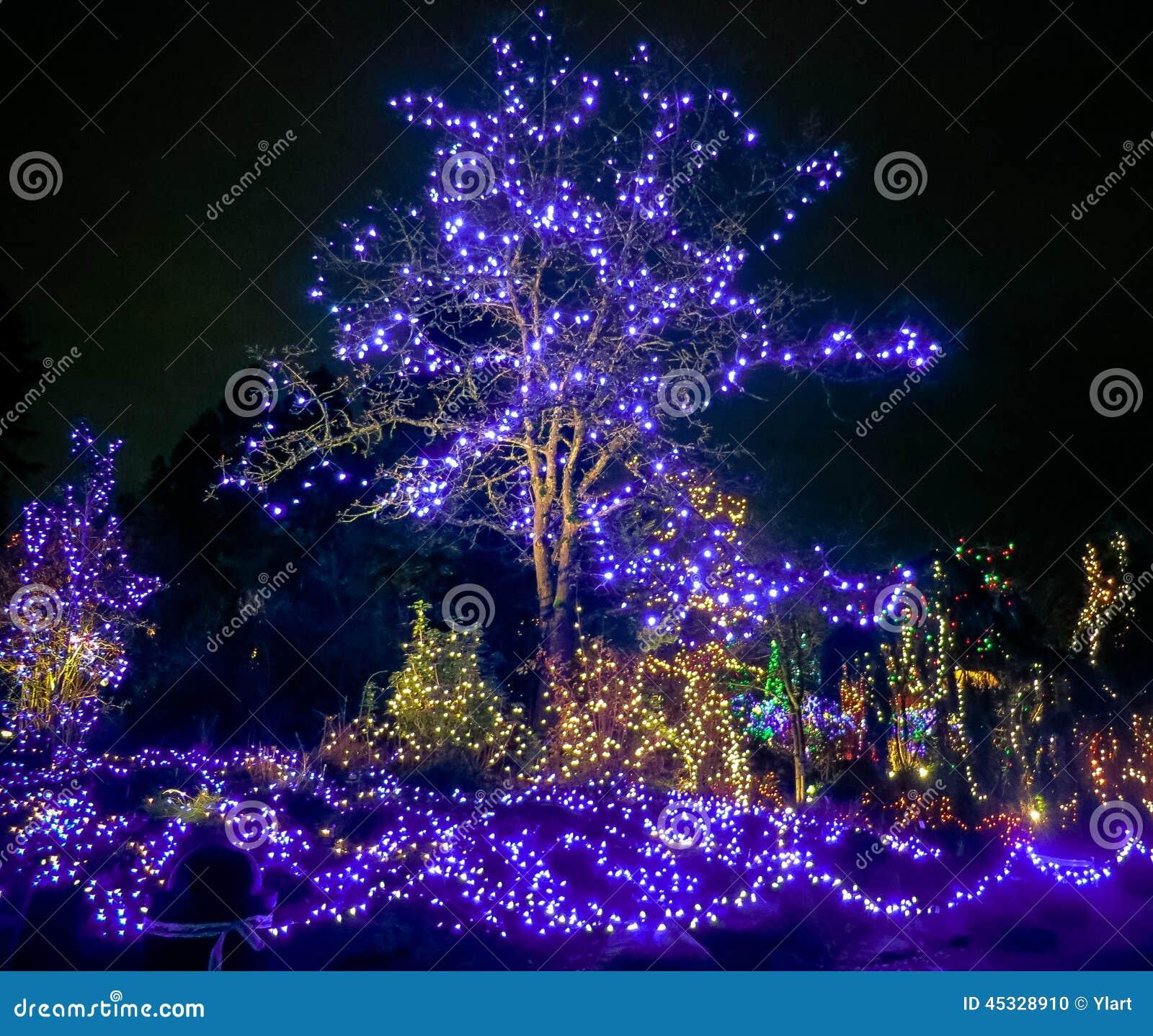Outdoor Christmas Lights Stock Photo Image 45328910