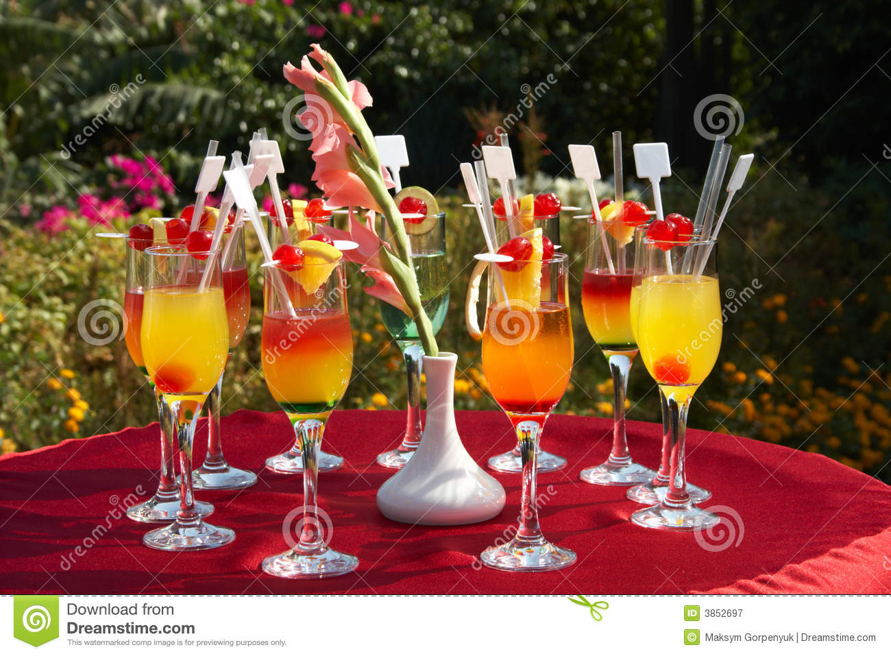 Outdoor Cocktail Party Royalty Free Stock Photography