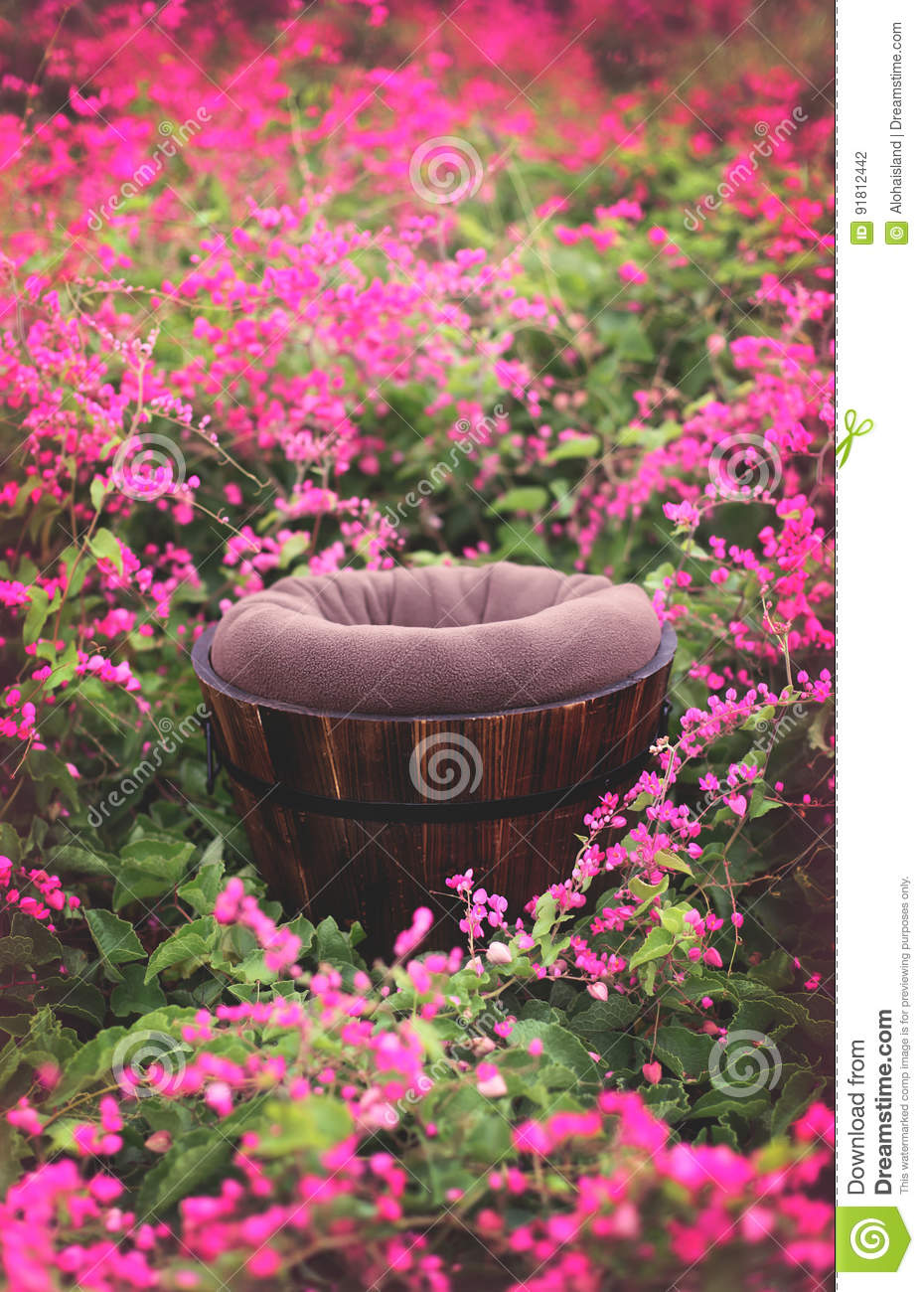 Outdoor Flower Field Digital Background Prop Stock Photo Image Of Brown Photography 91812442