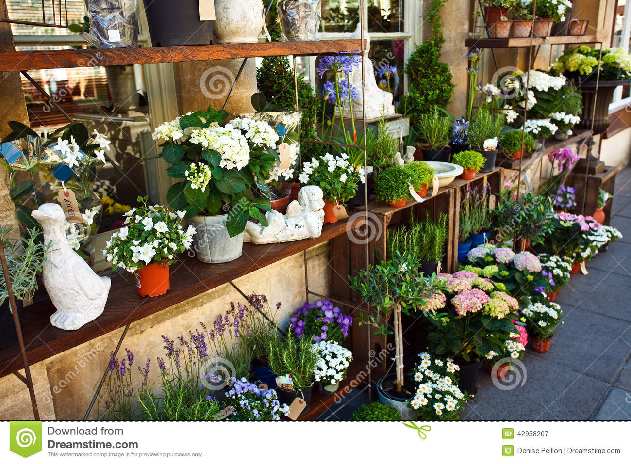 Outdoor flower shop stock image image of blooming for Garden display ideas