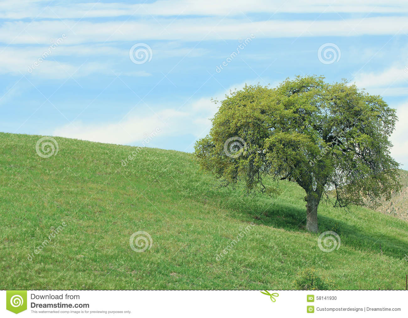 An outdoor lanscape of rolling green grass, an oaktree, and a blue sky with cloude.