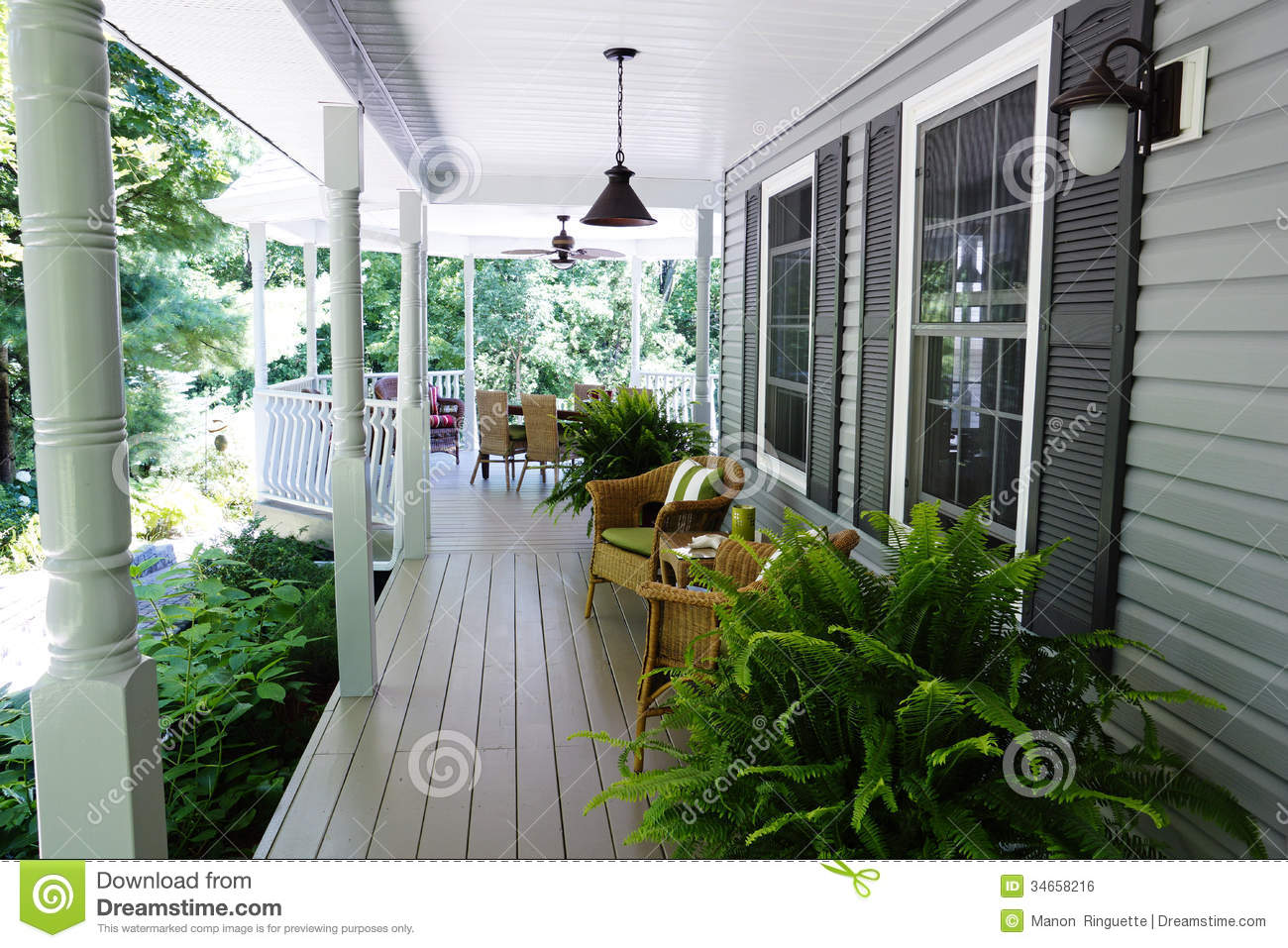 Outdoor Living Stock Photo Image Of Ferns Colours