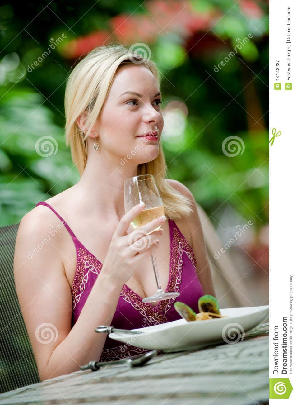 Outdoor meal royalty free stock photography image 14148237 for Meal outdoors