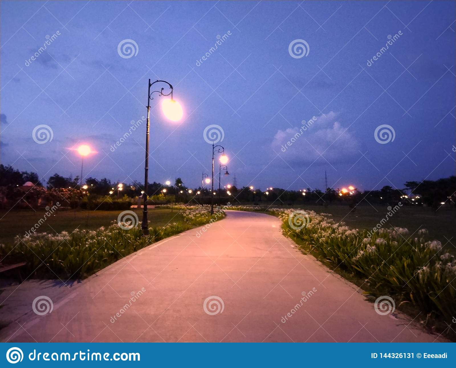 Outdoor Park with street light and path way.