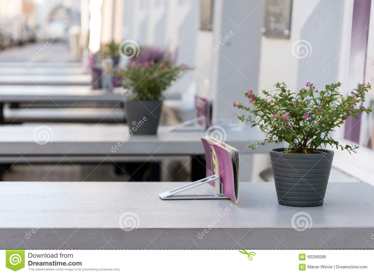 Outdoor Restaurant With Gray Tables And Pink Purple Flower Decor Stock Photo Image Of City Dinner 60268088