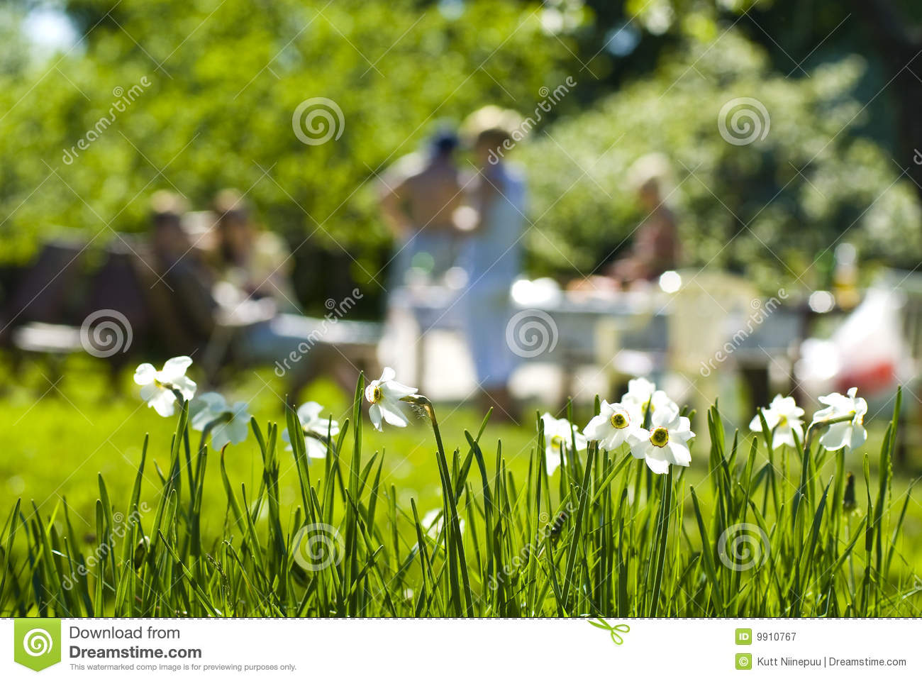 Outdoor Summer Party Royalty Free Stock Photography ...