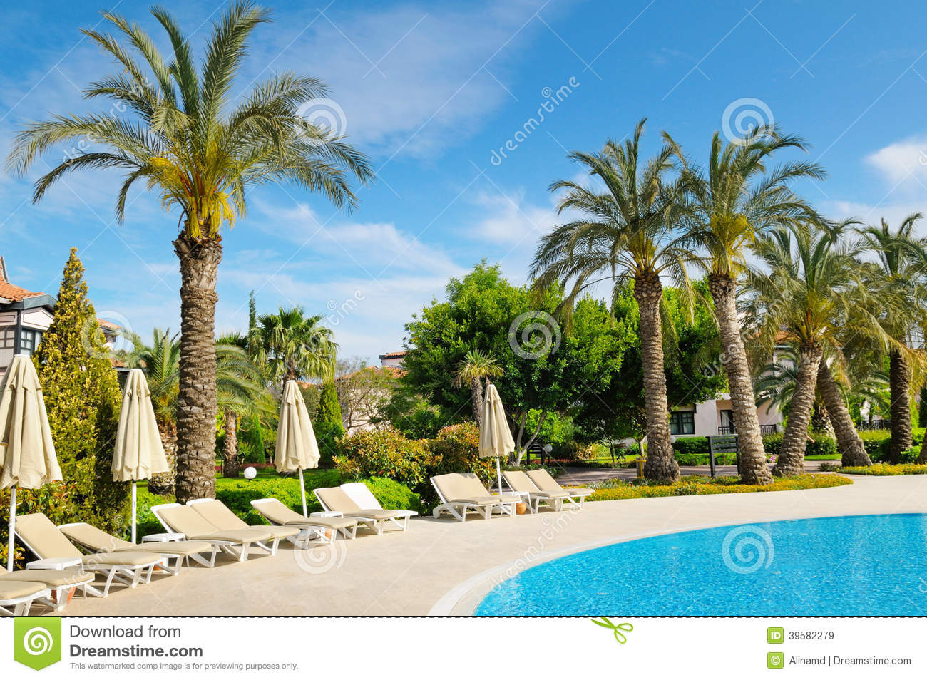 Outdoor Swimming Pool And Palm Trees Stock Photo Image