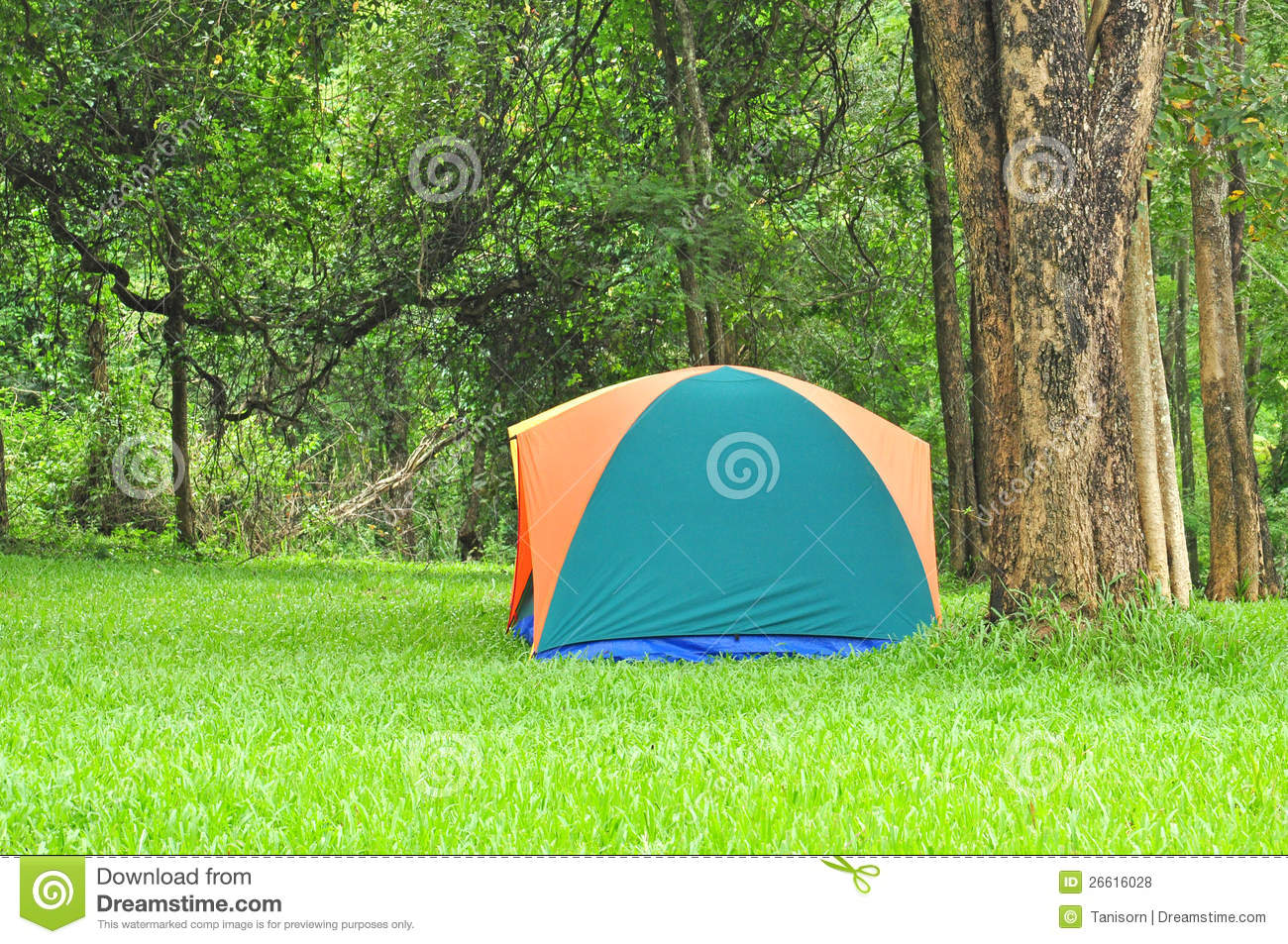 Outdoor Tent, Forest Camsite Royalty Free Stock Photos - Image ...: www.dreamstime.com/royalty-free-stock-photos-outdoor-tent-forest...