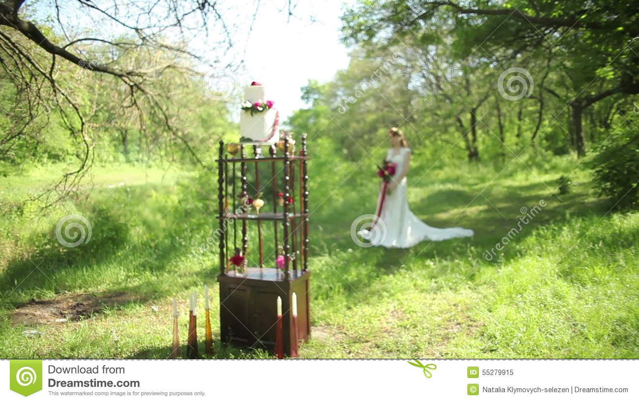 Outdoor Wedding Table Decorations And Young Bride With A Beautiful ...