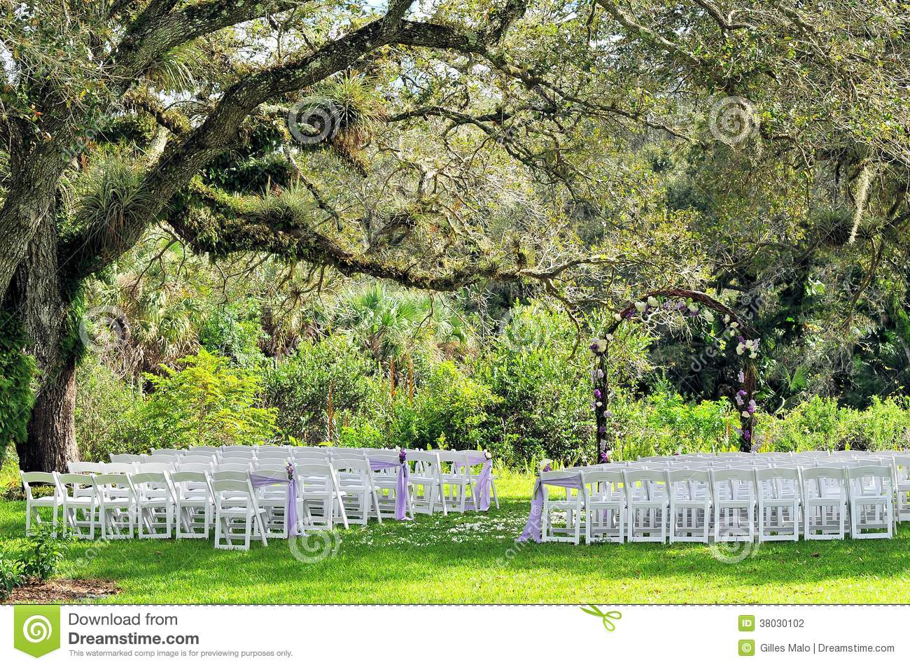 Outdoor Wedding Venue Under Old Tree Stock Photo Image Of Flowers Outdoor 38030102