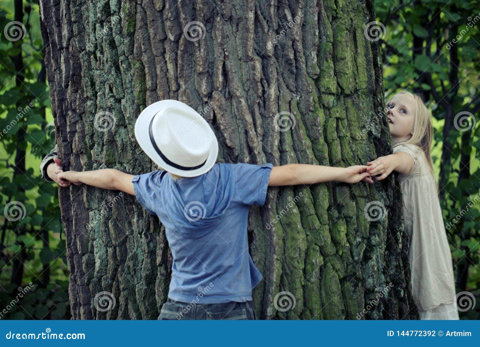 Дети обнимая дерево Природа охраны окружающей среды на открытом воздухе Консервация outdoors