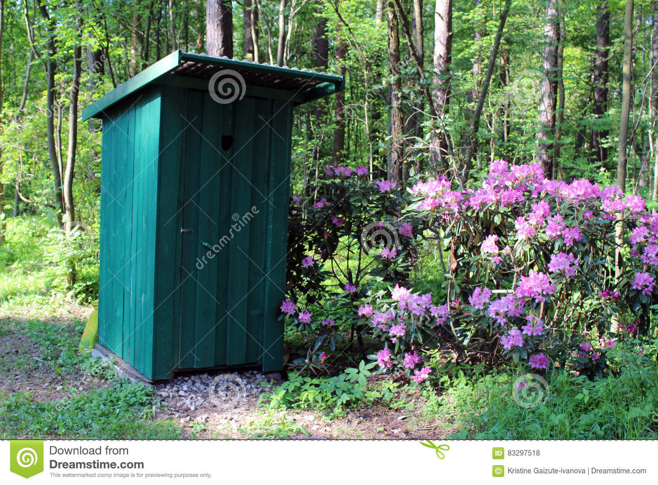 Outhouse in the forest