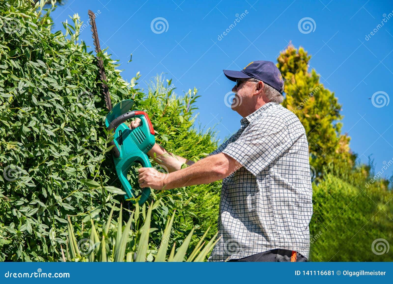Outils De Jardinage électriques Un Jardinier Professionnel ...