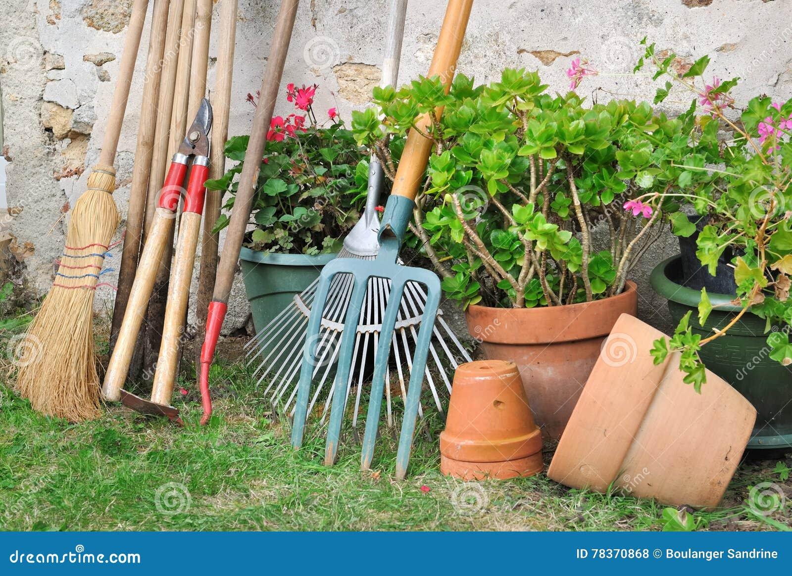 Outils De Jardinage Pour L\'entretien Photo stock - Image du fleur ...