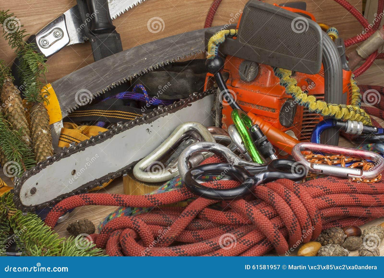 Outils pour quilibrer des arbres arboristes de service tron onneuse corde et carabiners pour - Travail du bois pour debutant ...