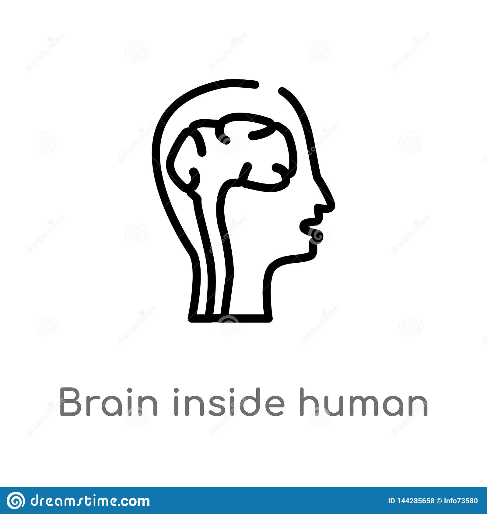Outline Brain Inside Human Head Vector Icon  Isolated Black
