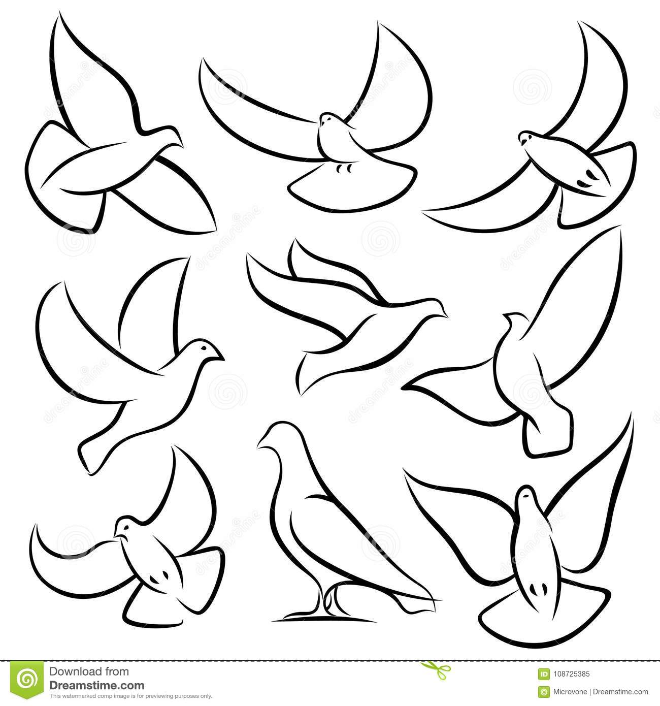 It is a picture of Hilaire Dove Drawing Outline