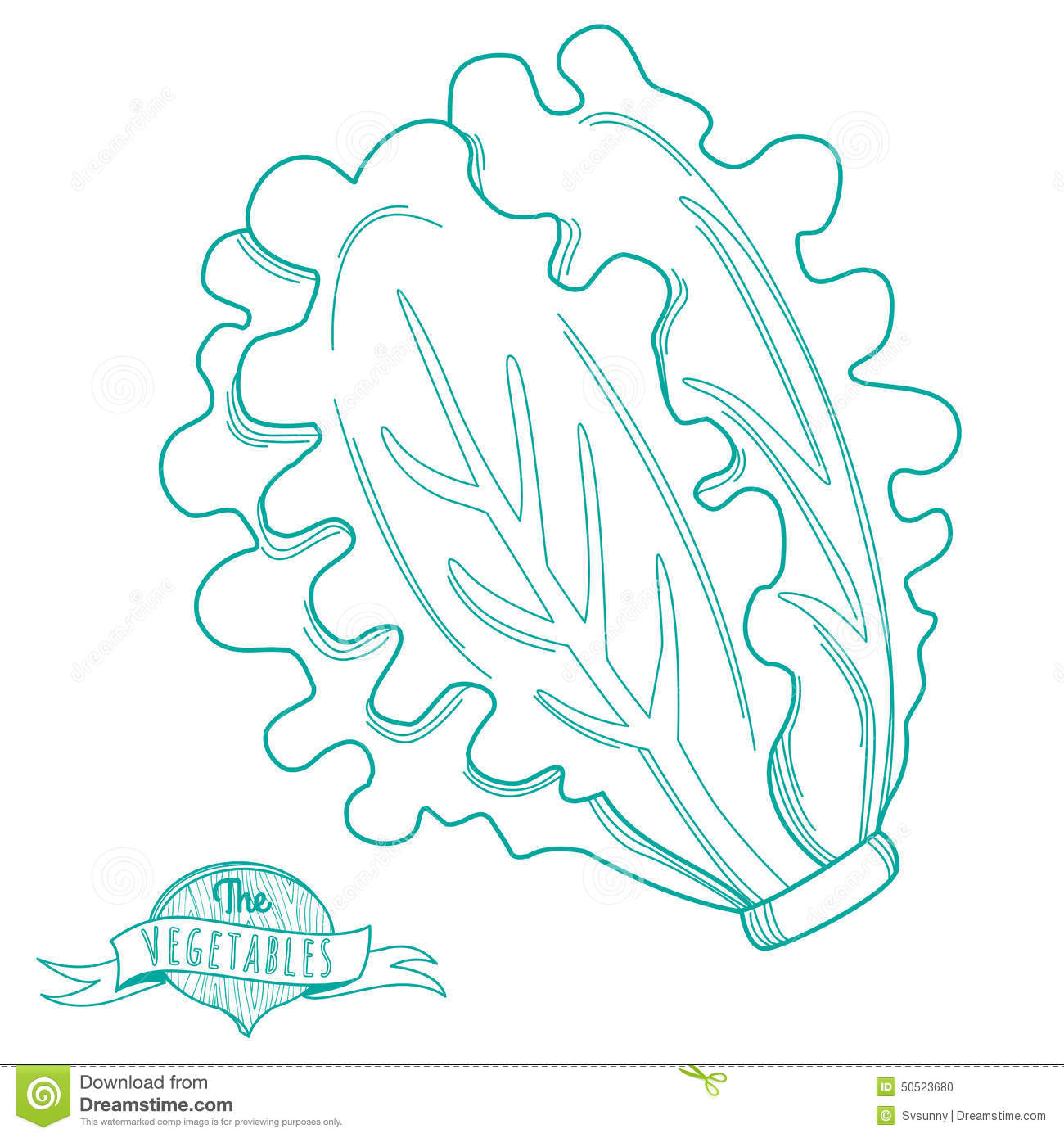 Outline Hand Drawn Sketch Of Lettuce (flat Style, Thin