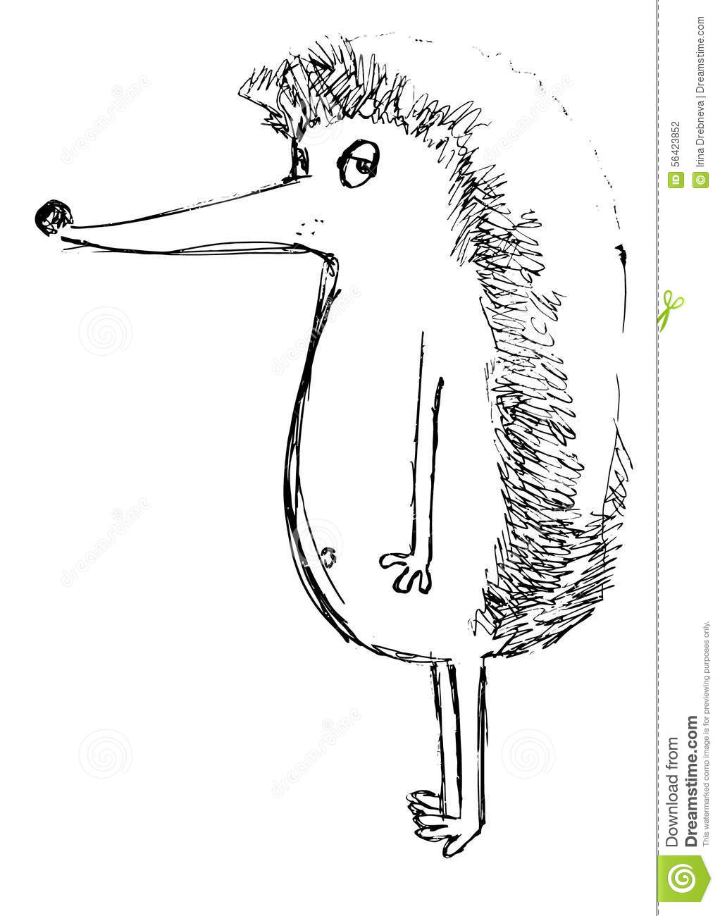 the outline of a hedgehog on a white background stock vector